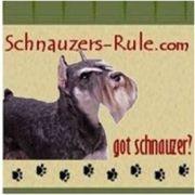 Schnauzer News Dog Blog