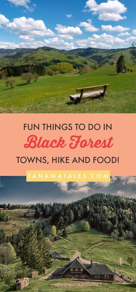 Things To Do In The Black Forest Region