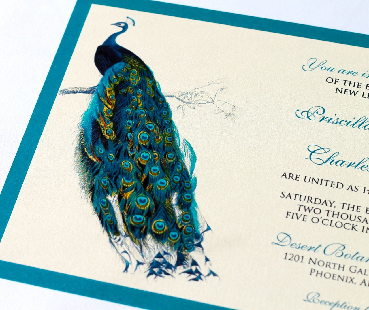 Priscilla Peacock Wedding Invitation Sample Ivory Ecru Teal