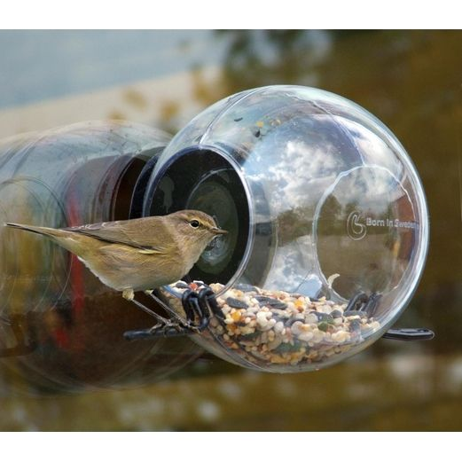 Suction-Cup Window Bird Feeder | EnviroGadget