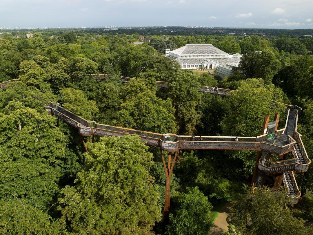 31007c20b67211932cd6ee0afb1acc5e - How High Is The Tree Top Walk At Kew Gardens