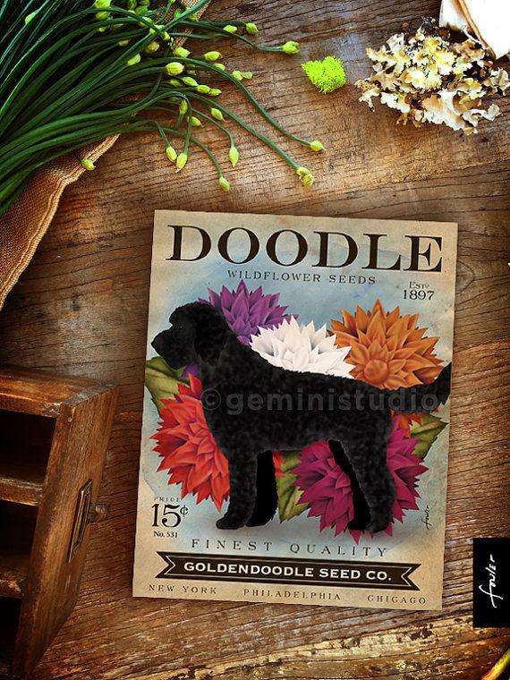 Doodle Goldendoodle Seed Company dog seed packet artwork ...