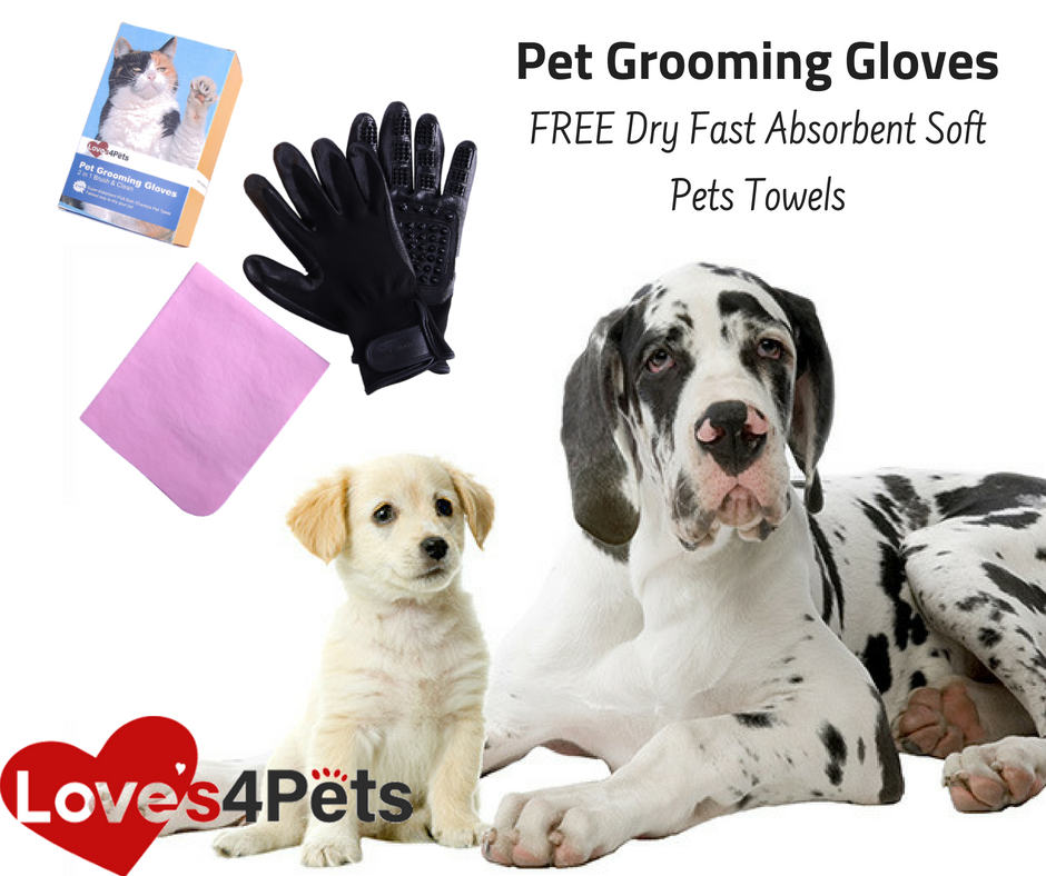 Our Pet S Safety First This Pet Grooming Gloves Are