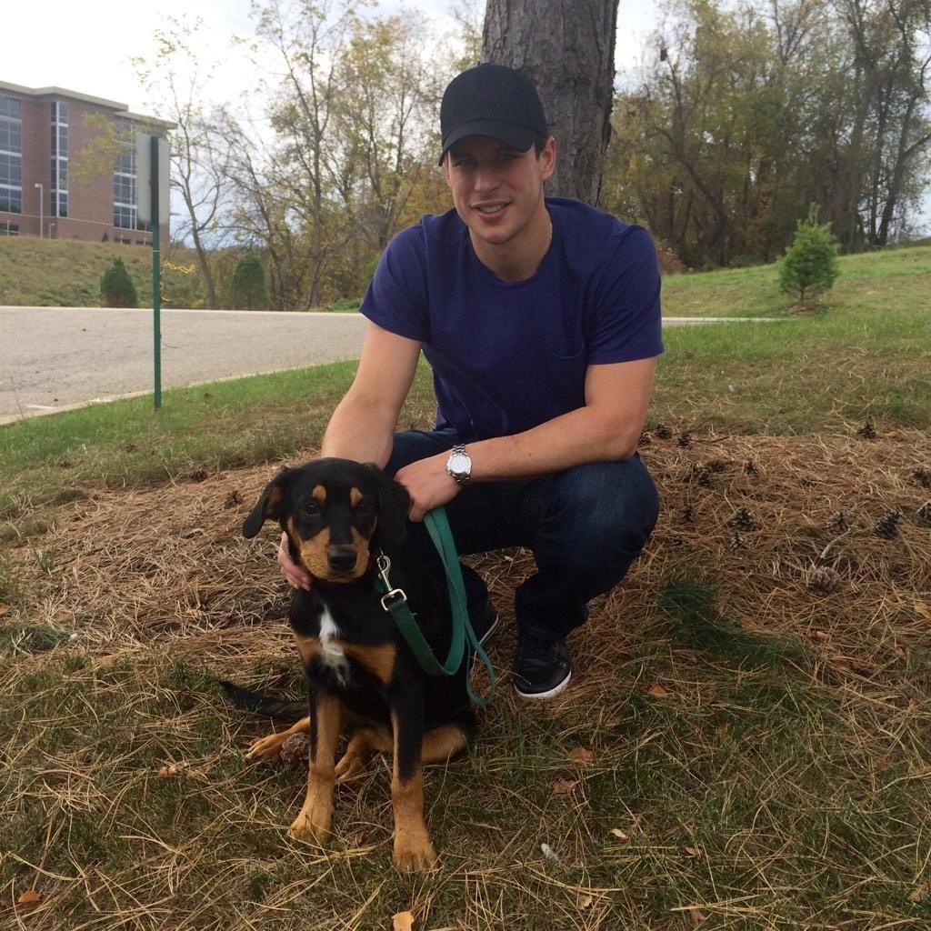 Sidney Crosby and a puppy during the 2015 Penguins and
