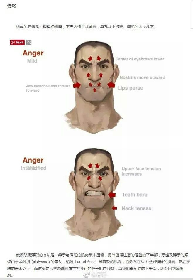 Anatomy of anger | Reference: expressions | Pinterest | Anatomía ...