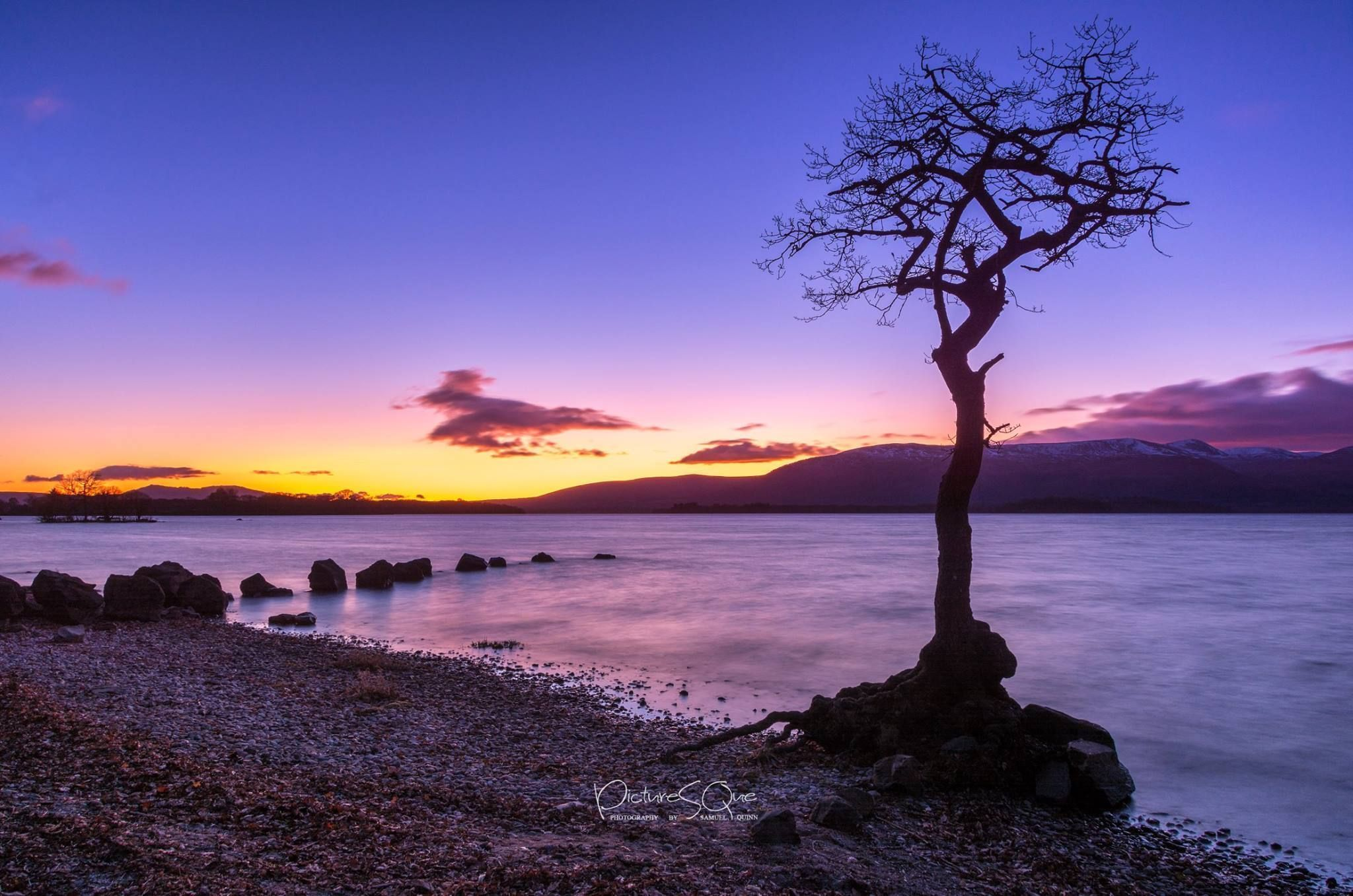 loch lomond and the famous tree at sunset #lochlomond loch lomond and the famous tree at sunset #lochlomond loch lomond and the famous tree at sunset #lochlomond loch lomond and the famous tree at sunset #lochlomond loch lomond and the famous tree at sunset #lochlomond loch lomond and the famous tree at sunset #lochlomond loch lomond and the famous tree at sunset #lochlomond loch lomond and the famous tree at sunset #lochlomond
