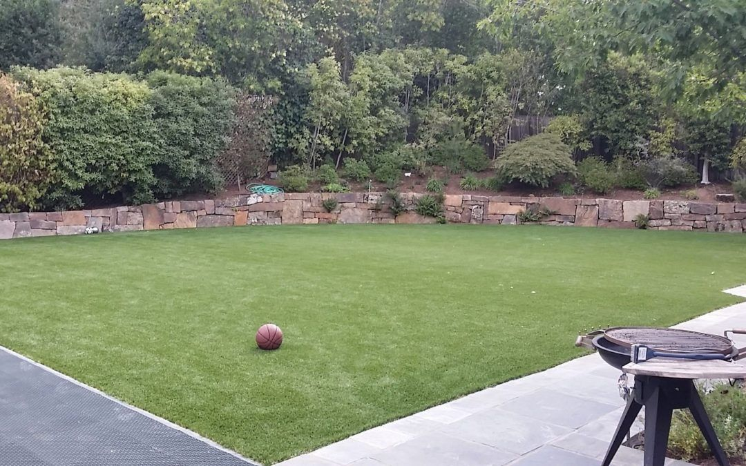 Artificial Turf over Natural Grass can save money and the