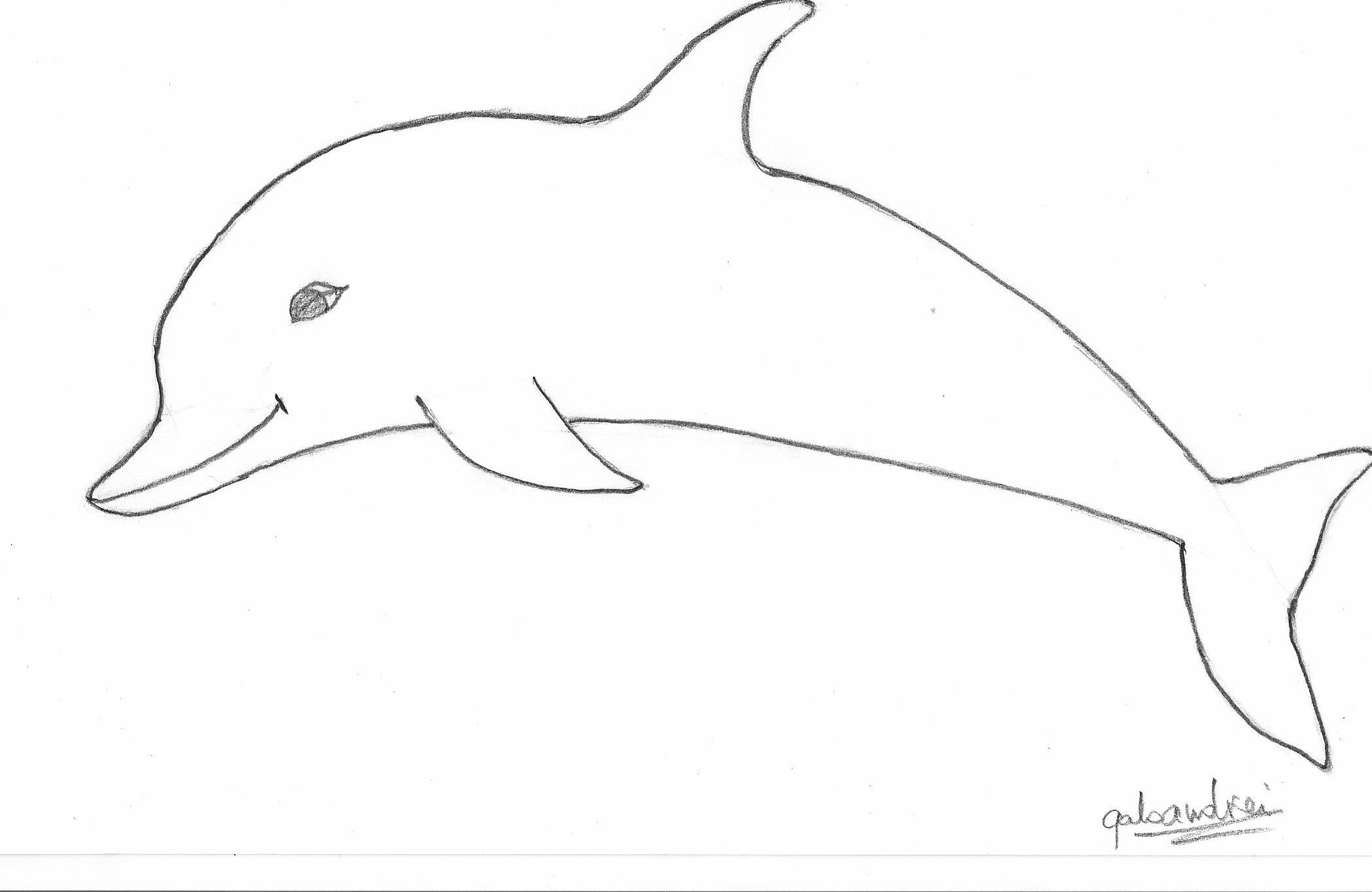 Wise Dolphin Drawings Ausmalbilder Zum Ausdrucken Kostenlos Zeichnungen Ausmalbilder