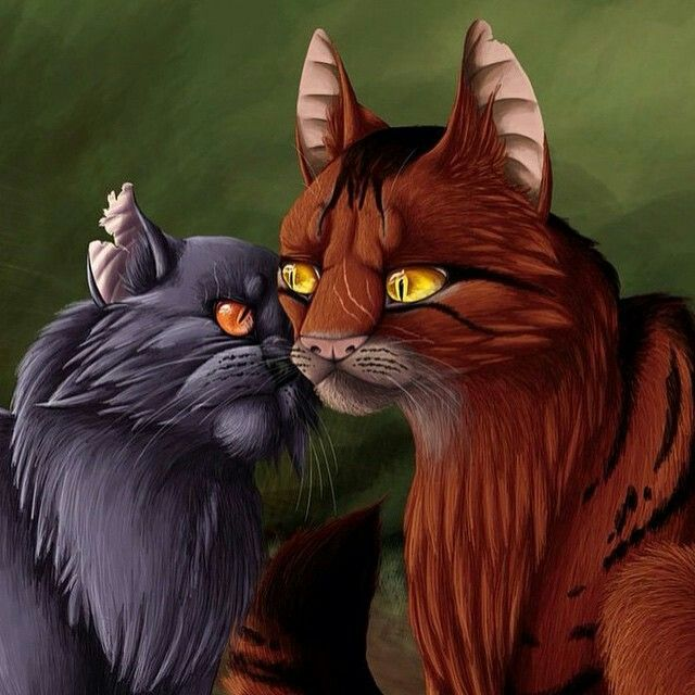 i love this pic of yellowfang and raggedpelt warrior