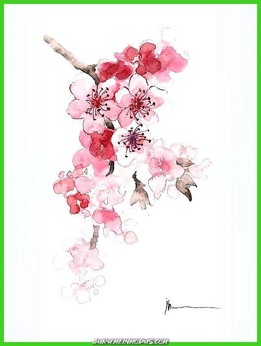 Großartig Sakura Blumen Aquarell Kunstdruck von Joanna Szmerdt   Großartig Sakura Blumen Aquarell Kunstdruck von Joanna Szmerdt