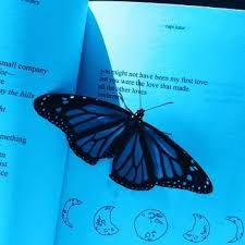 Image result for blue butterfly aesthetic Эстетика