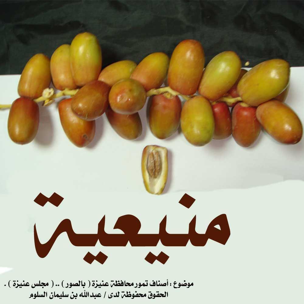 انواع التمور بالصور Fruit Vegetables Tomato