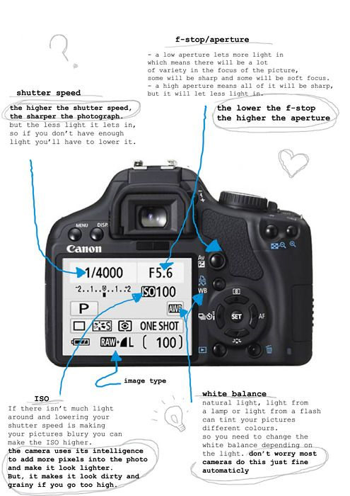 How to Use a DSLR Camera? A Beginner's Guide - YouTube