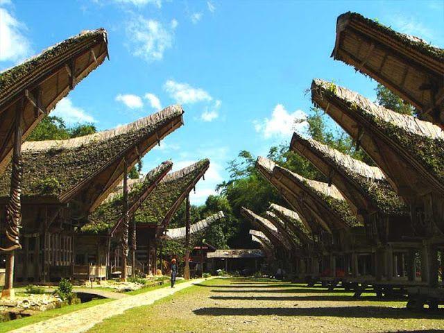 Tana Toraja Sulawesi Selatan Indonesia Dengan Gambar Wisata Budaya Travel Tour Pemandangan