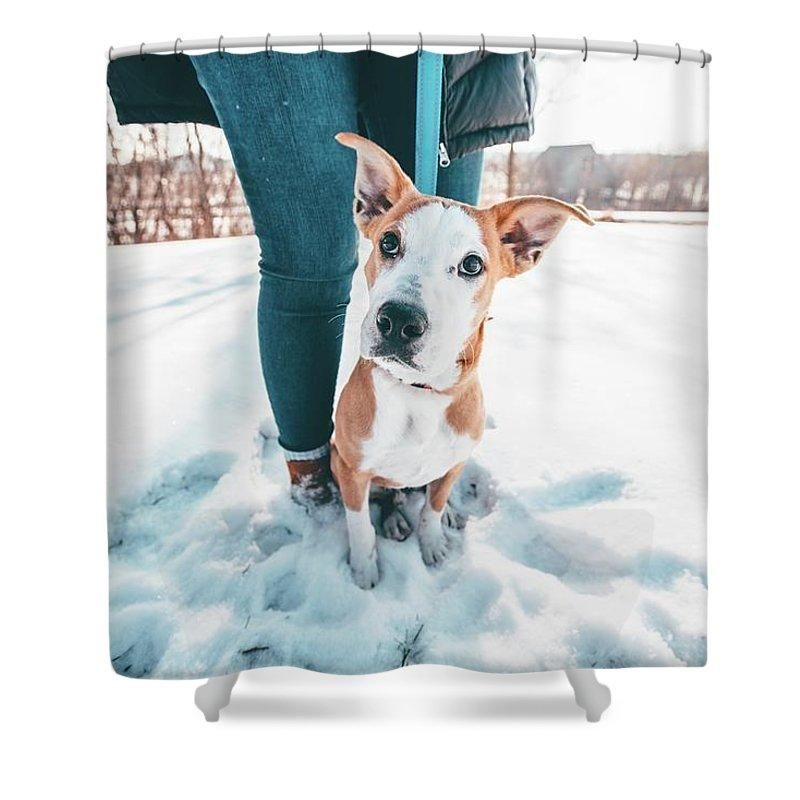 Nature Animal Doggo Shower Curtain Nature Animals Animals