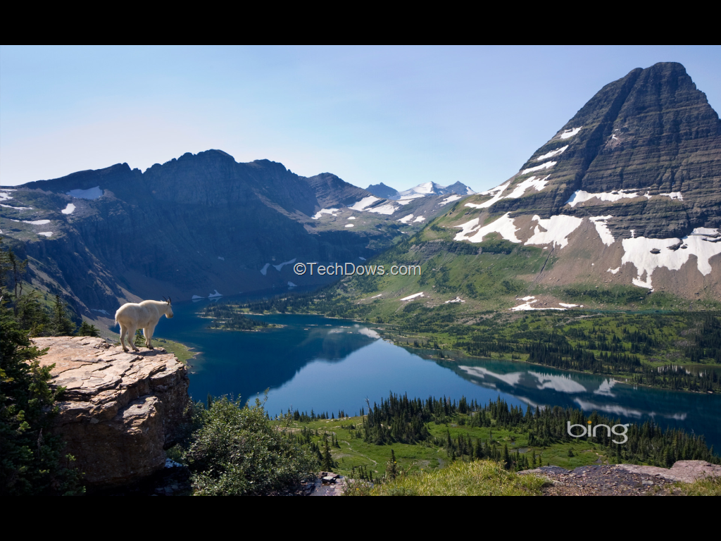 Download Bing Wallpaper Pack from Microsoft Techdows
