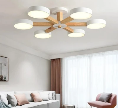 Pin On Nordic Ceiling Lights