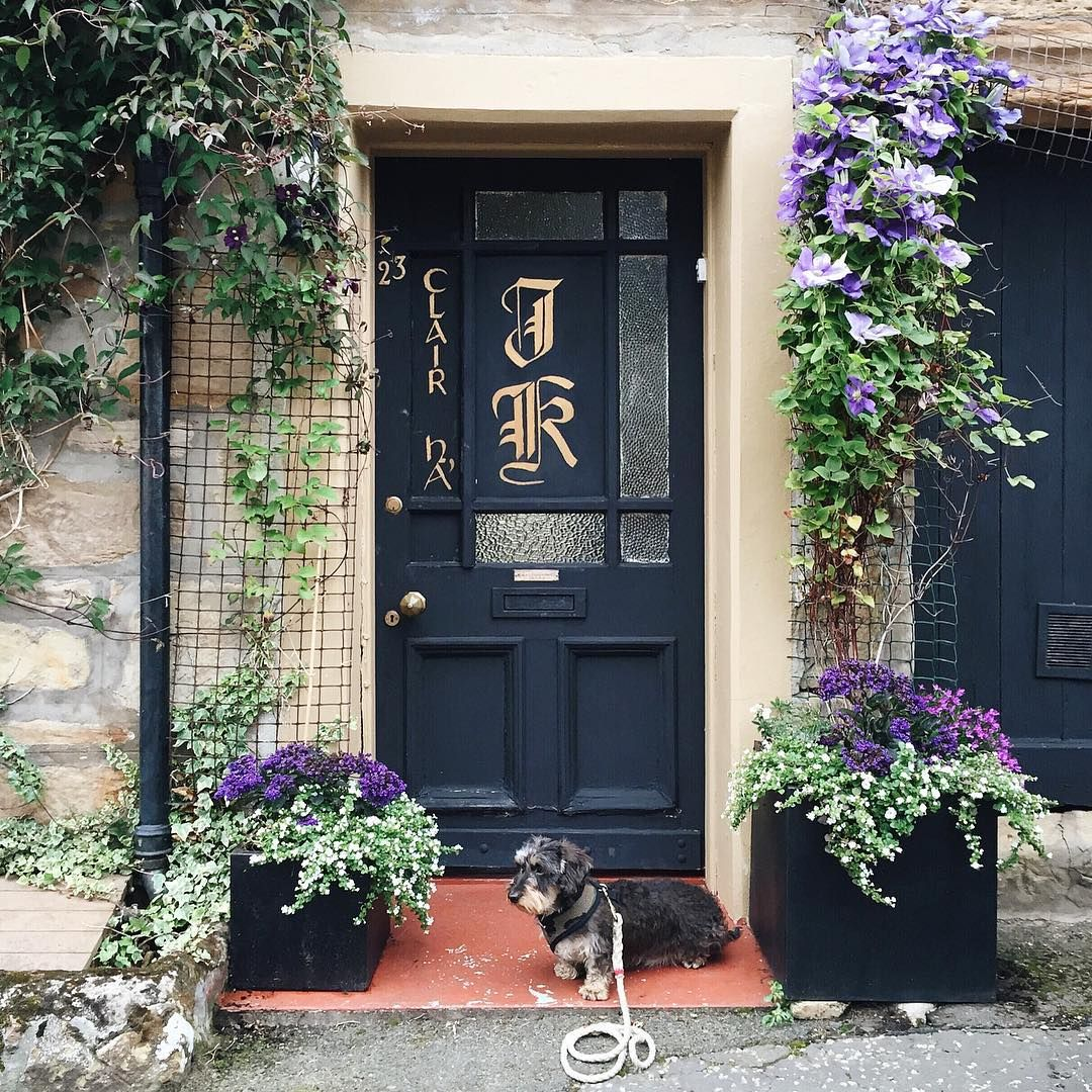 #blue #door #monogram #dachshund / So how about this for a cool door. ...  #doortraits #theclub #visitfife #crail #HarrisStaycation