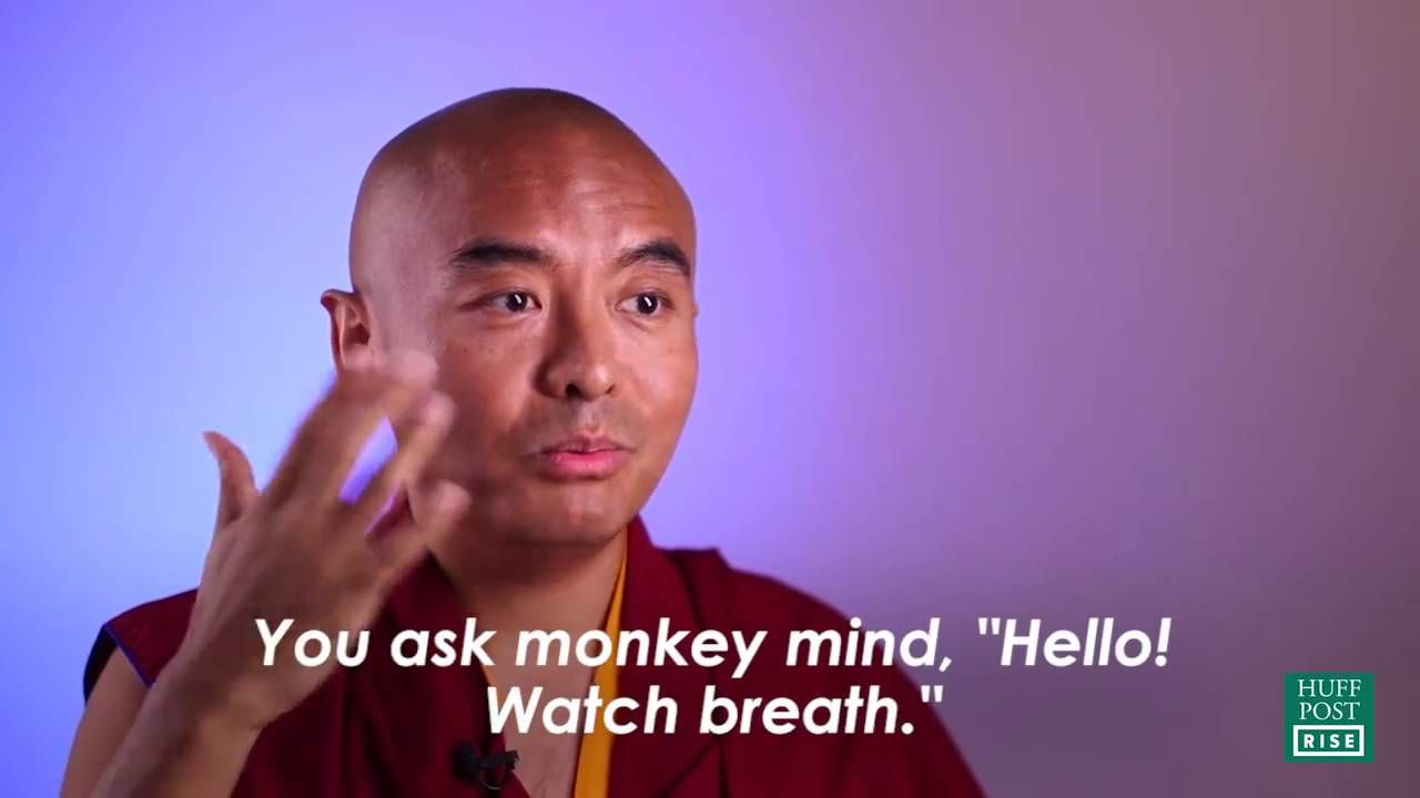 Learn Meditation From This Buddhist Monk