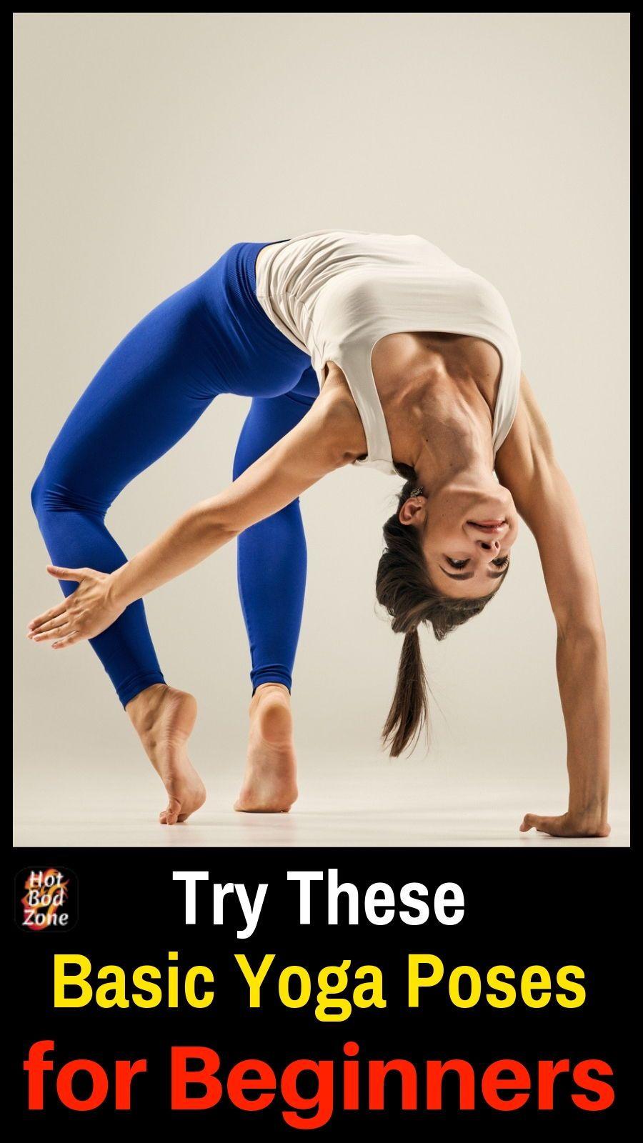 Basic Yoga Poses for Beginners   Basic yoga poses, Yoga ...