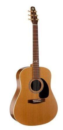 Seagull Artist Mosaic Review Acoustics Under 1000 Review Series Best Acoustic Guitar Guitar Seagull Guitars
