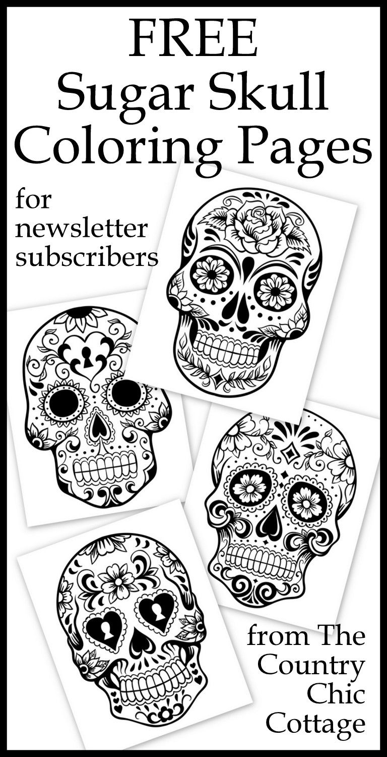Free coloring pages for adults pdf