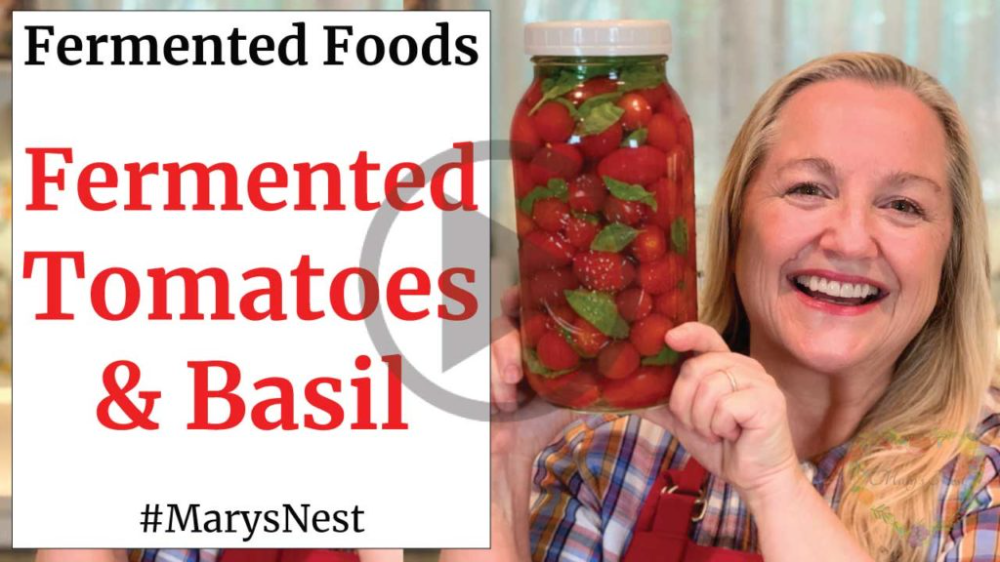 Fermented Tomatoes Recipe Fermented Cherry Tomatoes With Basil Mary S Nest Recipe Fermentation Cherry Tomatoes Tomato Recipes