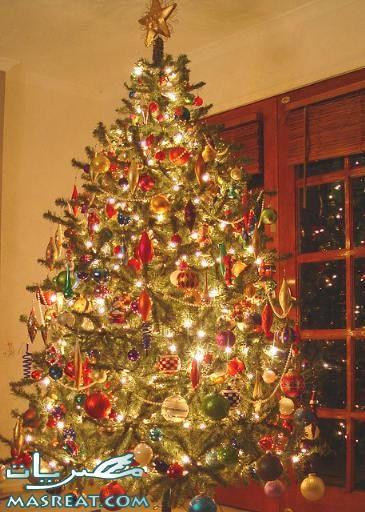 تحميل صور شجرة عيد الميلاد المجيد كريسماس 2014 زينة راس السنة Christmas Tree Country Christmas Xmas