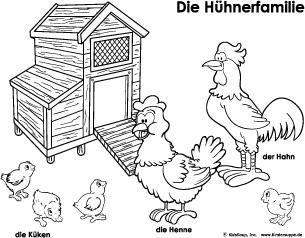 Hühner und Küken: Bücher, Lieder und Spiele   Kindersuppe