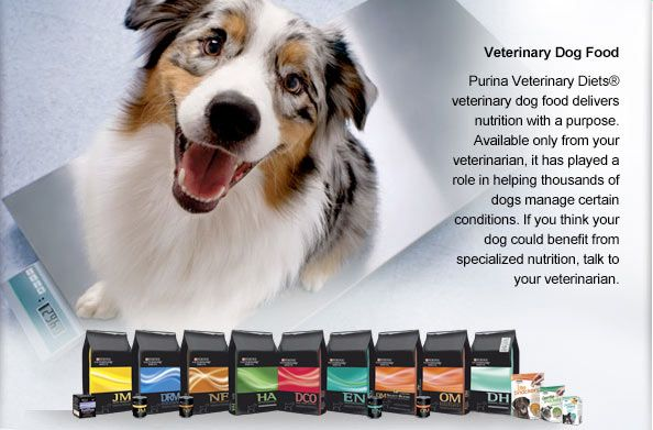 We Carry Purina Products Purina Dog Food Recipes Foods Delivered