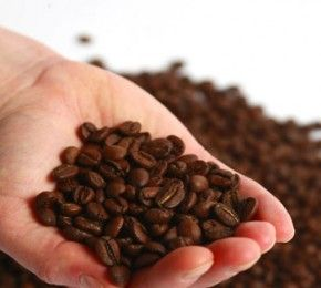 Kaffee macht schön (mit Bildern)   Peeling kaffee, Kaffee ...