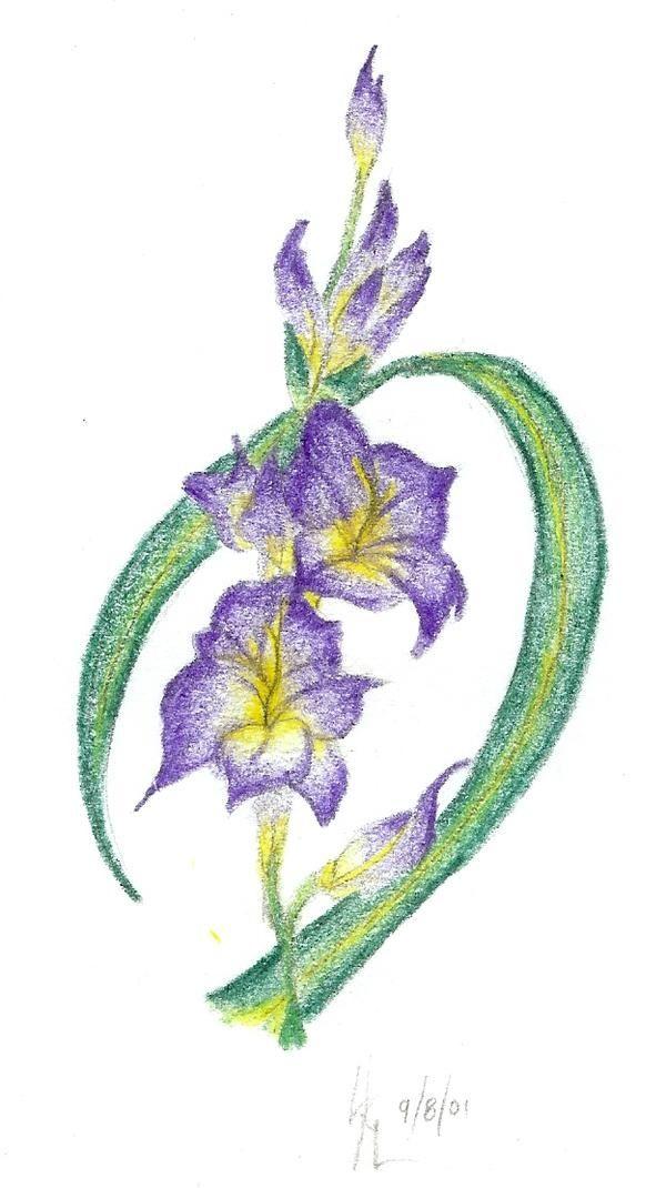 a68a2c9b61ae9 small gladiola (tattoo) | new tattoos | Pinterest | images ...