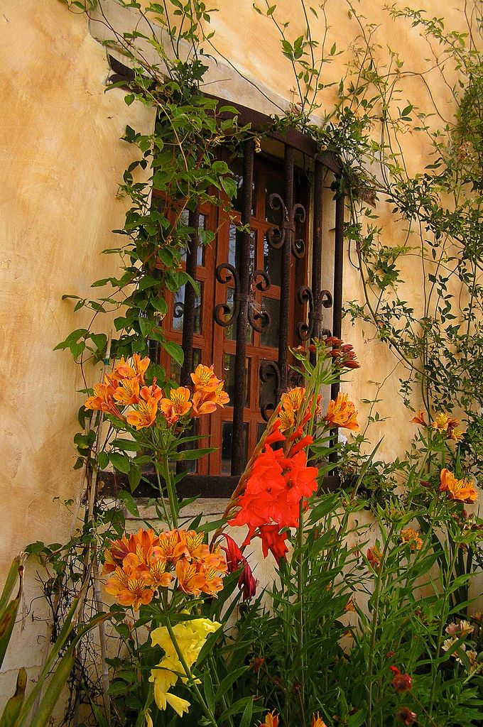 Window with flowers ... Carmel-by-the-Sea, CA. These colors just make me feel good.