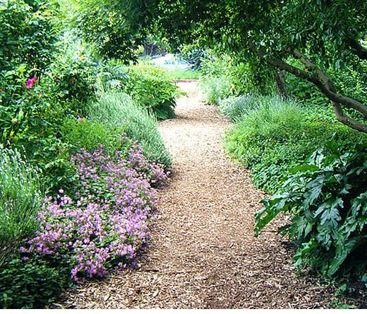 Garden Paths With Wood Chips.