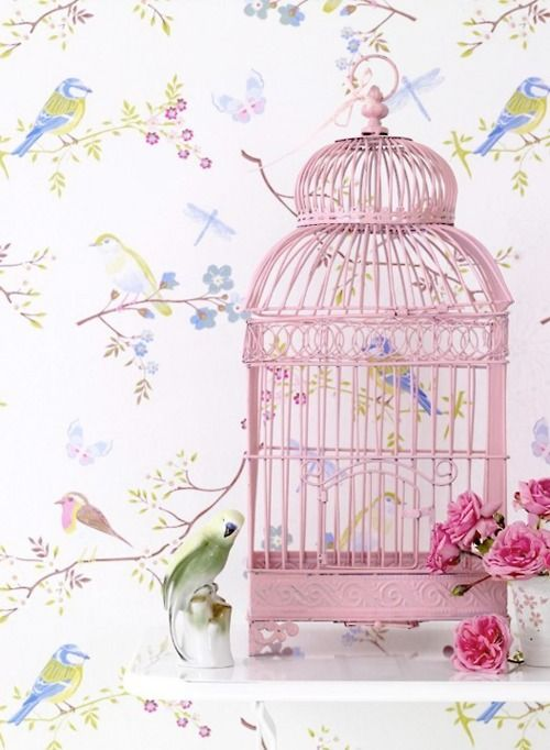 A very pretty display.  I love that pink cage.