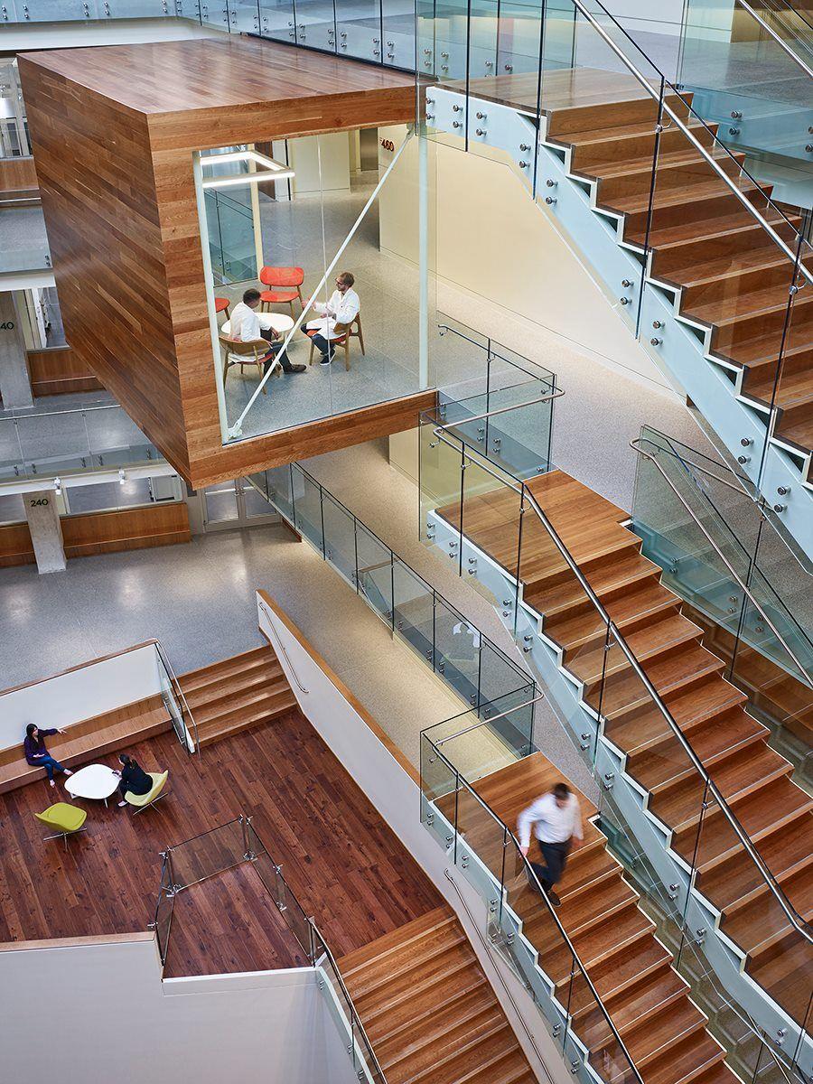 Perkins + Will Allen Institute Research Facility Seattle Designboom 02  Stairs Architecture, Architecture Interiors,