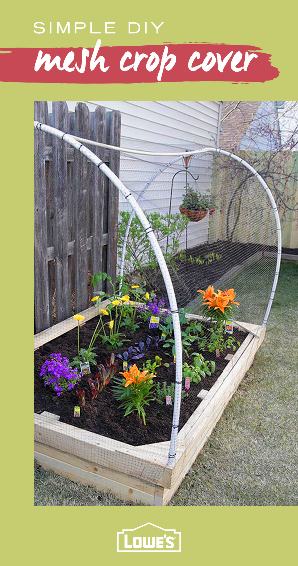 Consider adding a mesh cover to your raised garden bed