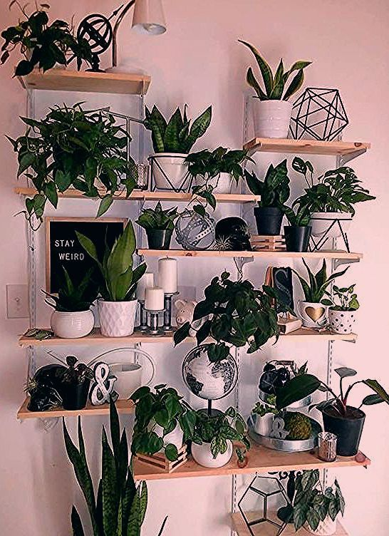 Photo of 52 Eingebauter Blumenkasten Ideen, um Ihren Außenbereich einfach zu dekorieren – Gardening – Zimmerp