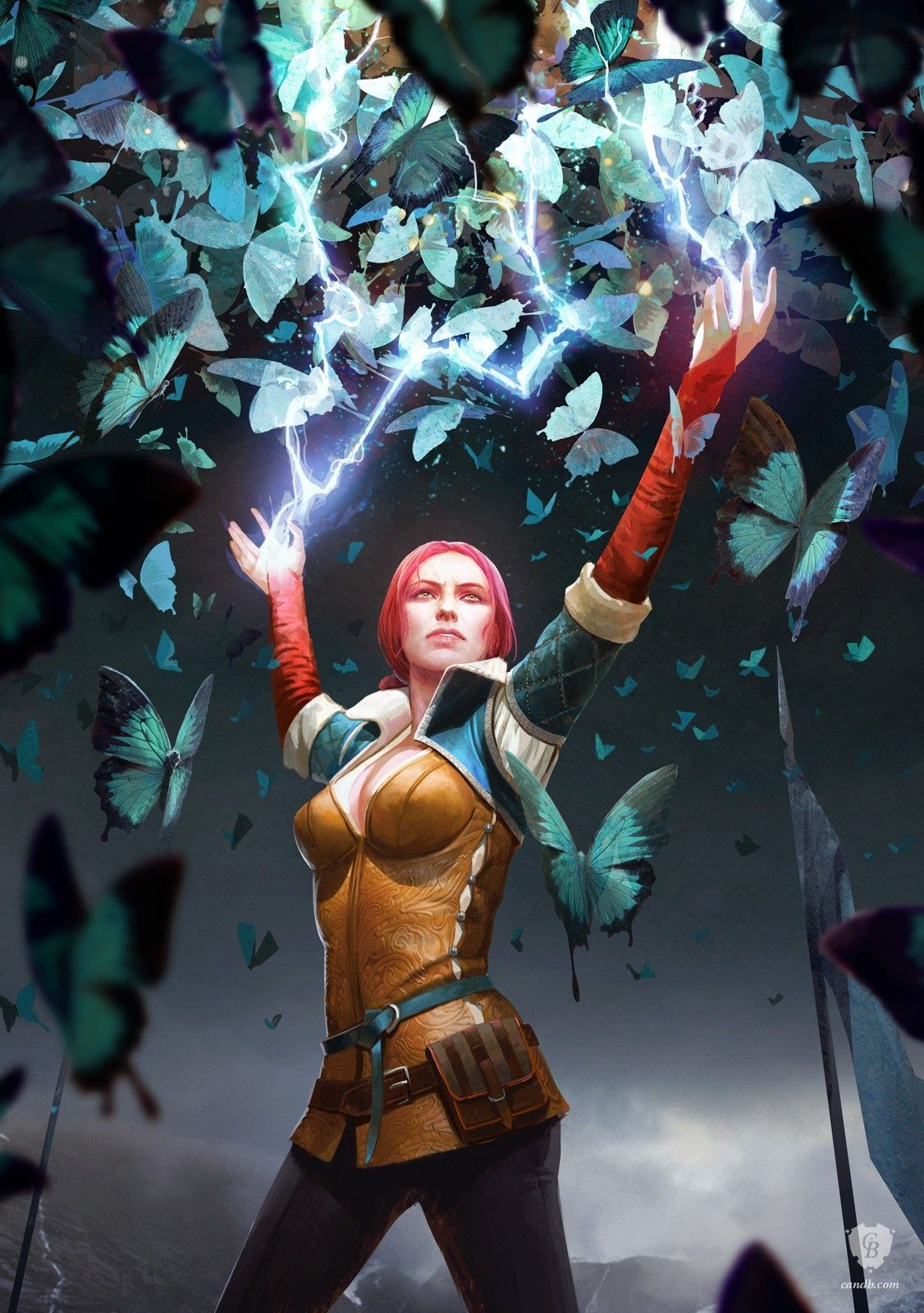 Artwork Triss Butterfly Spell Witcher 3 The Witcher 3 Board