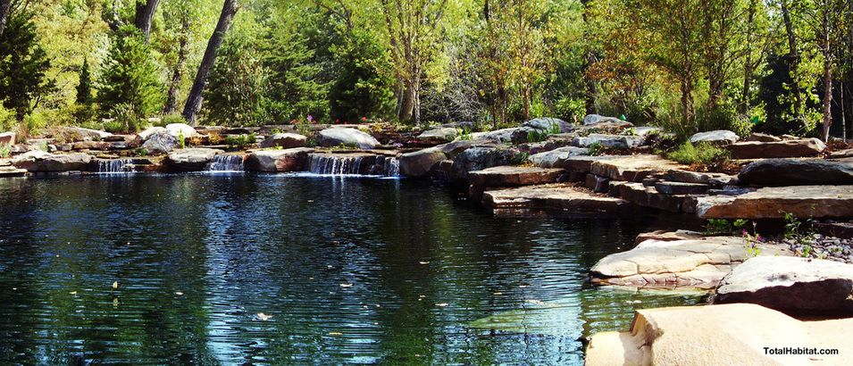 rocky natural swimming pool pond pools pinterest swimming pool pond natural swimming