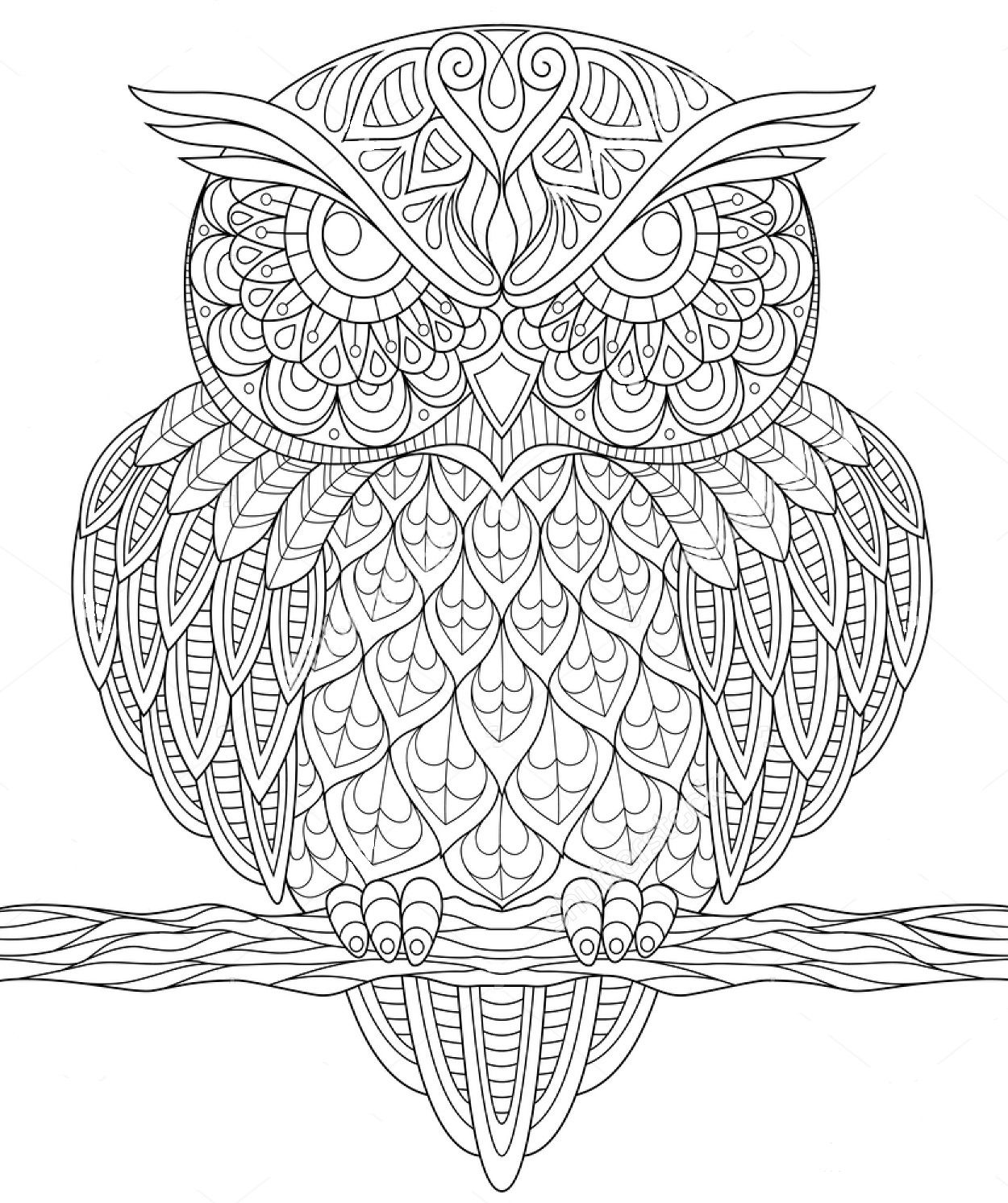 Owl Zentangle Coloring Page Owl Coloring Pages Abstract Coloring Pages Coloring Pages
