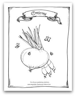 free vegetable garden coloring books printable activity pages for kids - Children Activity Pages