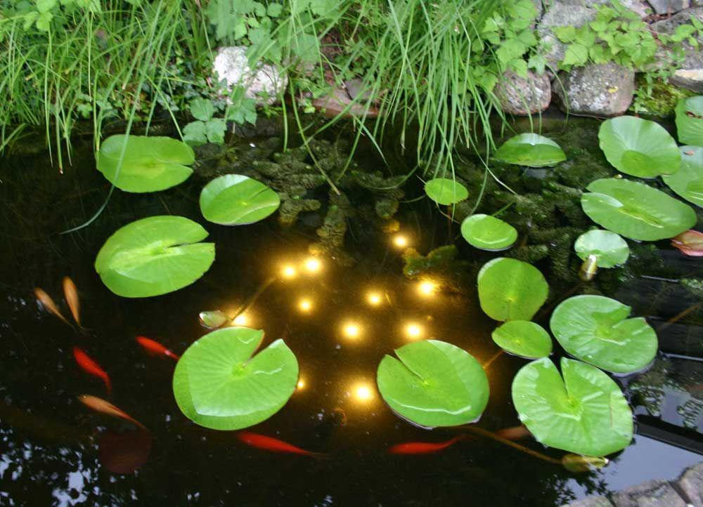Nuevas luces de decoración para estanque