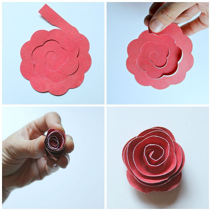 rolled paper flower shadowbox