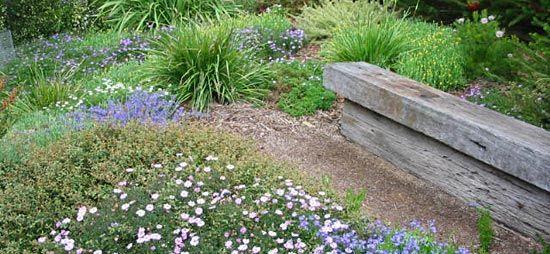 Australian Native Plants Society (Australia)   Garden Design Study .