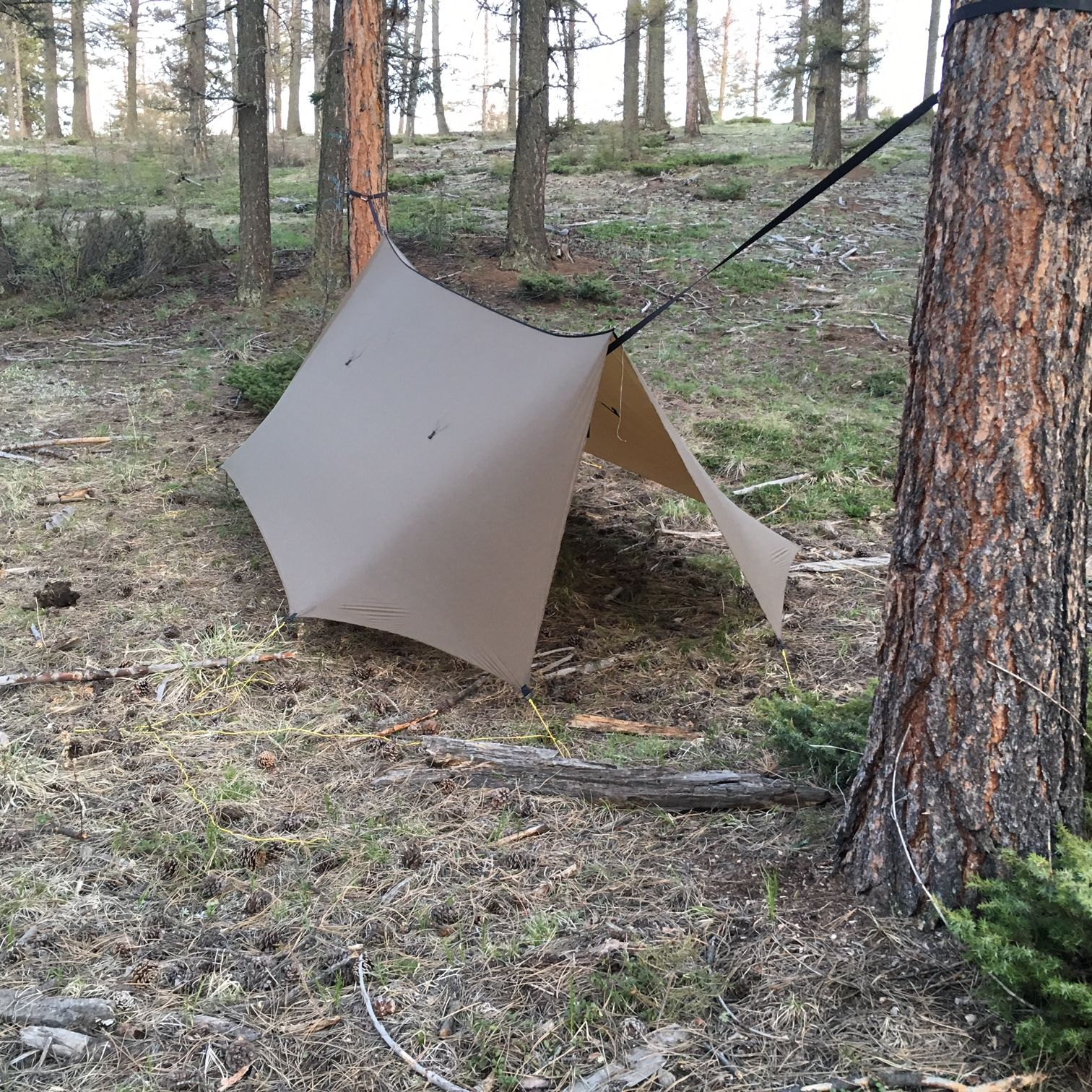 the superfly is our largest hammock tarp  it would be considered a  u201cwinter u201d tarp or an  u201call season u201d tarp for hammock camping made of lightweight fabric  superfly tarp   superfly large tarps and hammock tarp  rh   pinterest