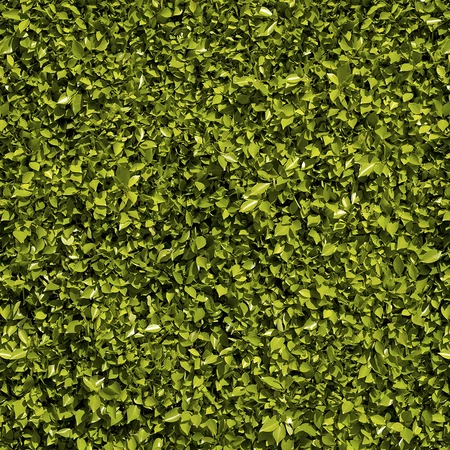 Fliepaper 2 Green Wallpaper Wall Texture Design Grass Textures