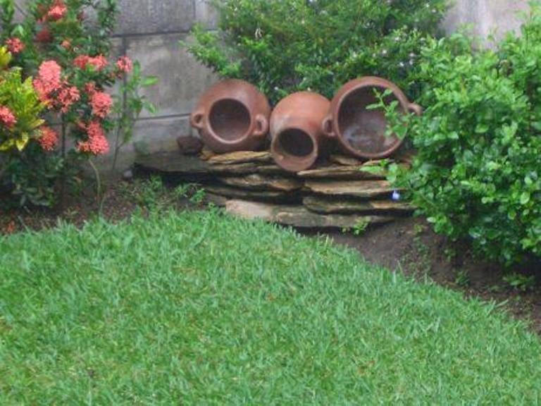 Tinajas Con Plantas Poned Fotos Foro De Infojardin Tinajas Jardines Plantas