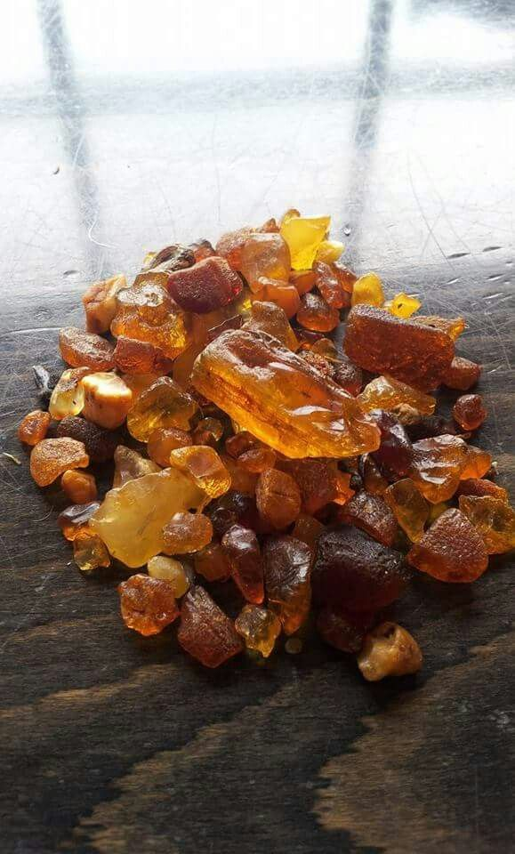 Baltic amber pieces from Germany. Hiddensee-Bernstein. | Amber ...
