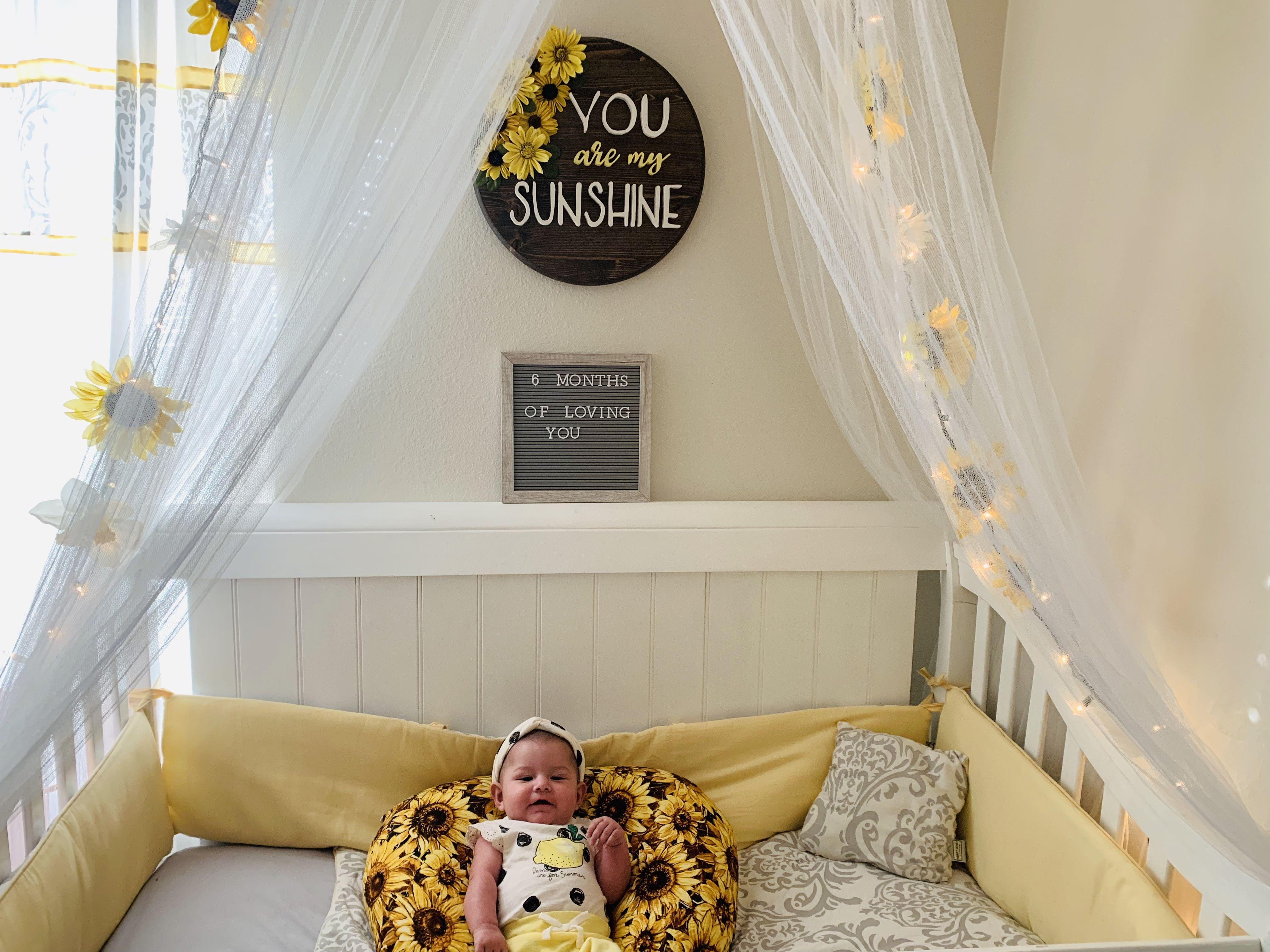6 Month Baby Pic   Baby Girl Nursery Room, Baby Girl Bedroom, Girl Nursery Room